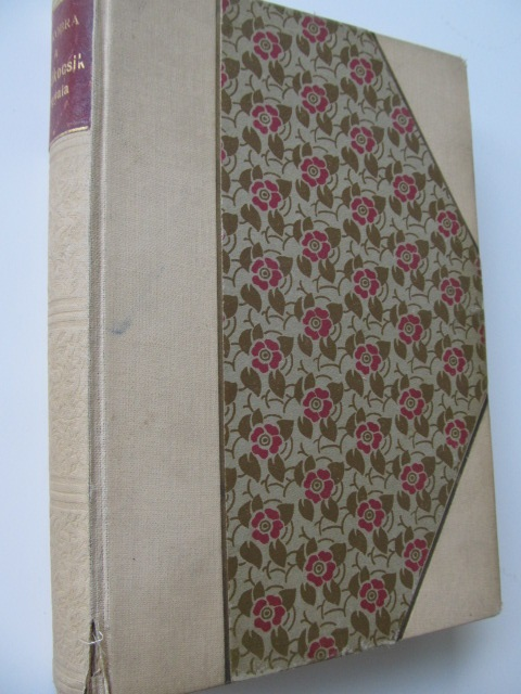 A halokocsik angyala - Maurice Dekobra | Detalii carte