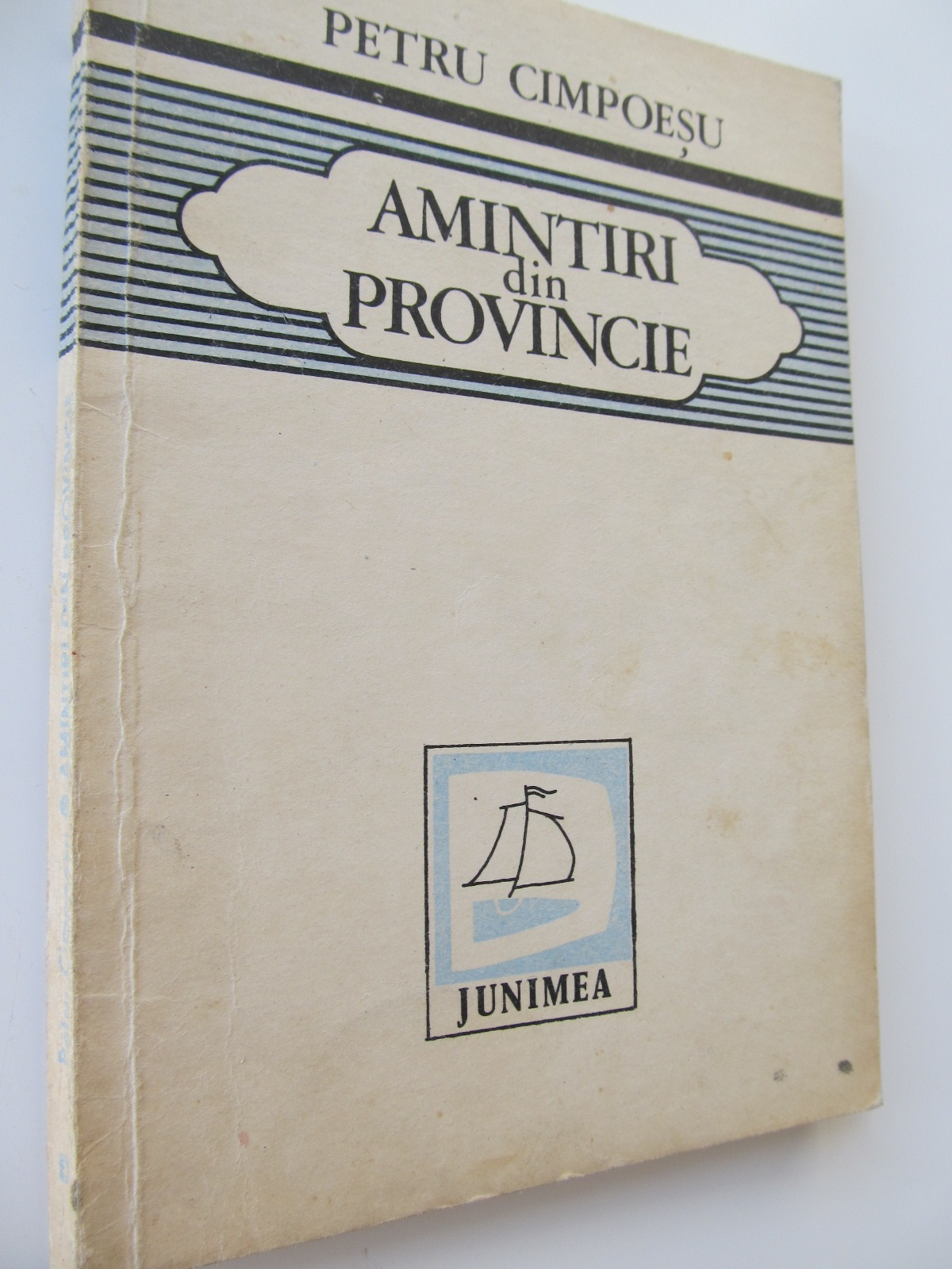 Amintiri din provincie - Petru Cimpoesu | Detalii carte