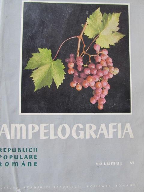 Ampelografia Republicii Populare Romane (vol. VI) - soiurile putin raspandite A - M - Gherasim Constantinescu , Elena Negreanu , ... | Detalii carte
