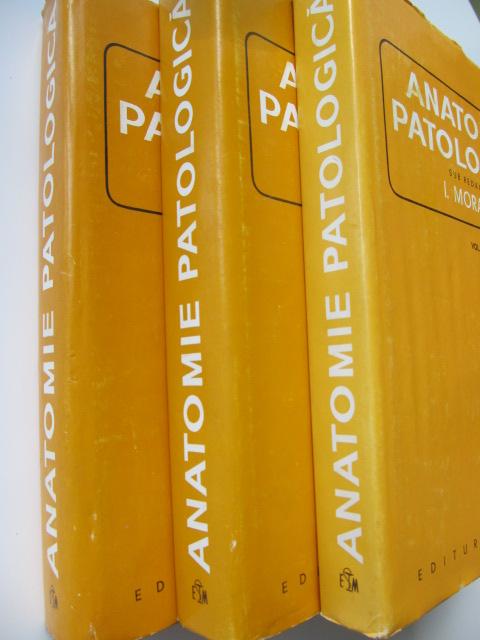 Carte Anatomie patologica (3 vol.) - I. Moraru