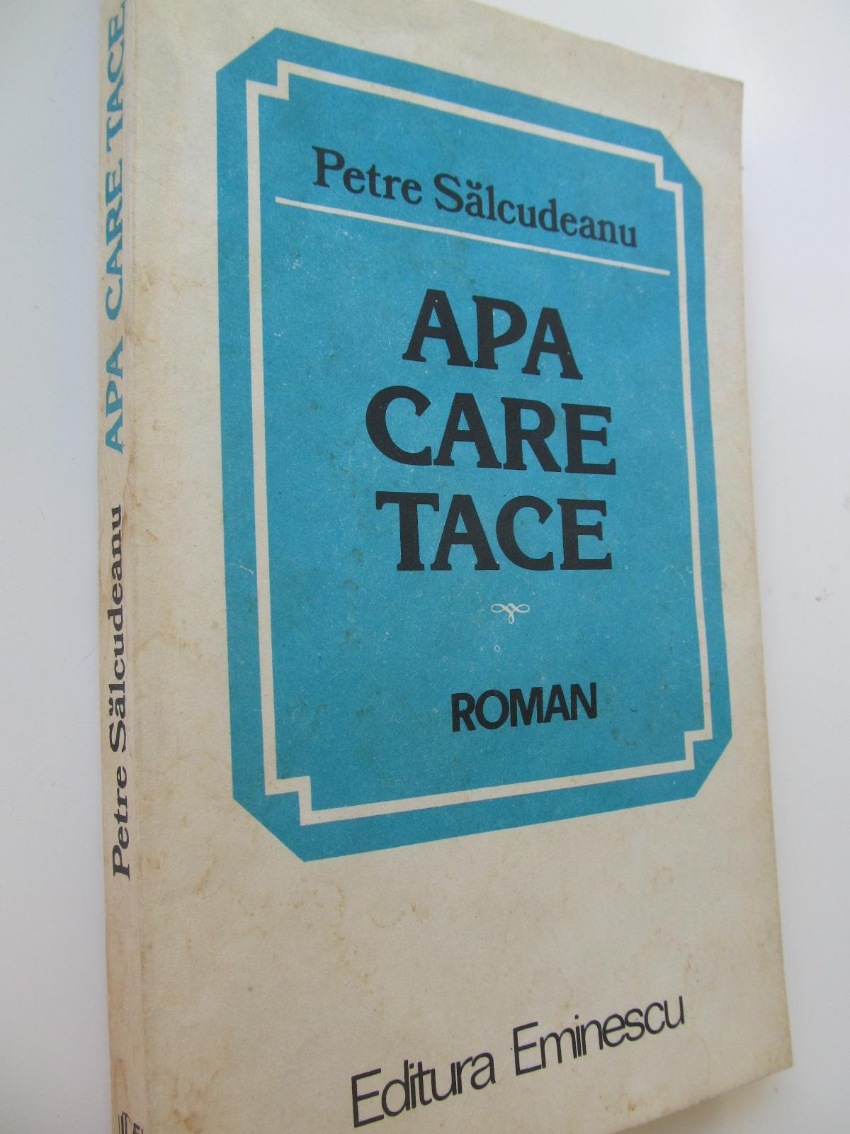 Apa care trece - Petre Salcudeanu | Detalii carte