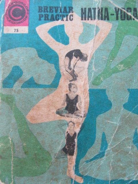 Breviar prctic Hatha Yoga (75) - Ion Vulcanescu | Detalii carte