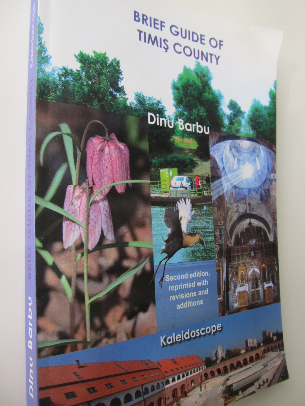 Brief guide of Timis County (Ghid judet Timis) - Dinu Barbu | Detalii carte