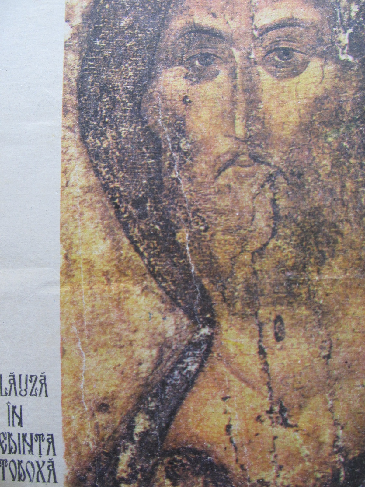 Calauza in credinta ortodoxa - Ilie Cleopa | Detalii carte