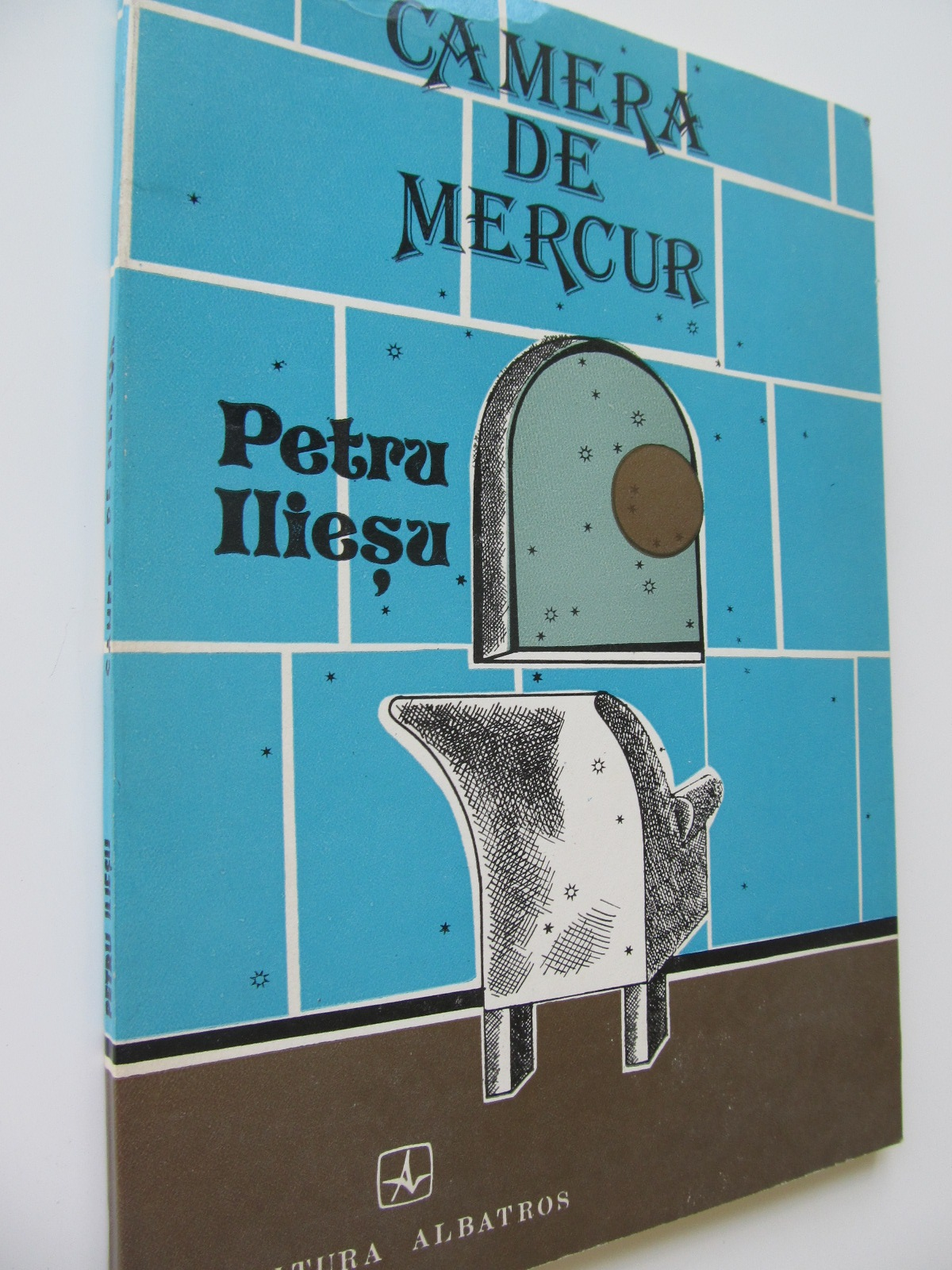 Camera de mercur - Petru Iliesu | Detalii carte