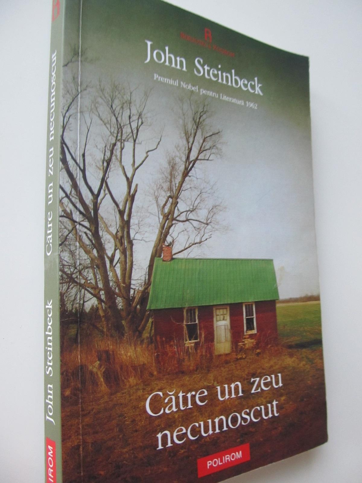 Catre un zeu necunoscut - John Steinbeck | Detalii carte