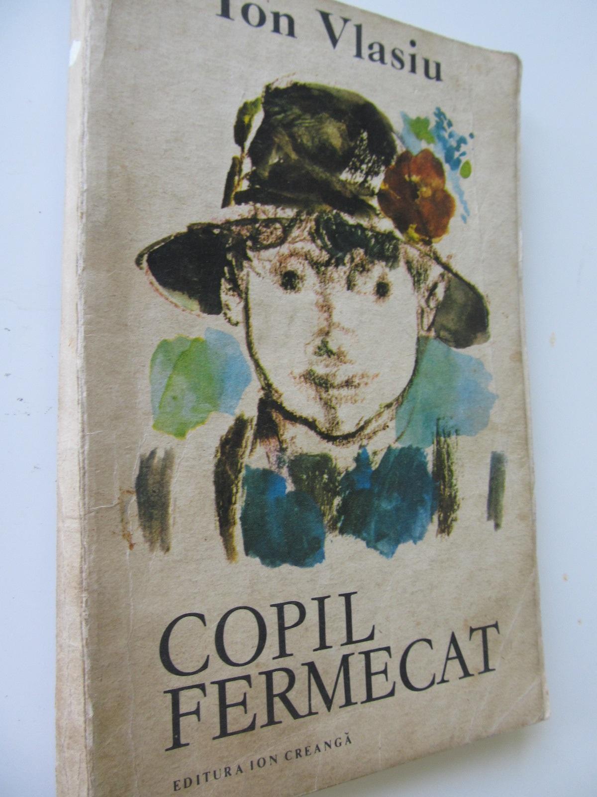 Copil fermecat - Ion Vlasiu | Detalii carte