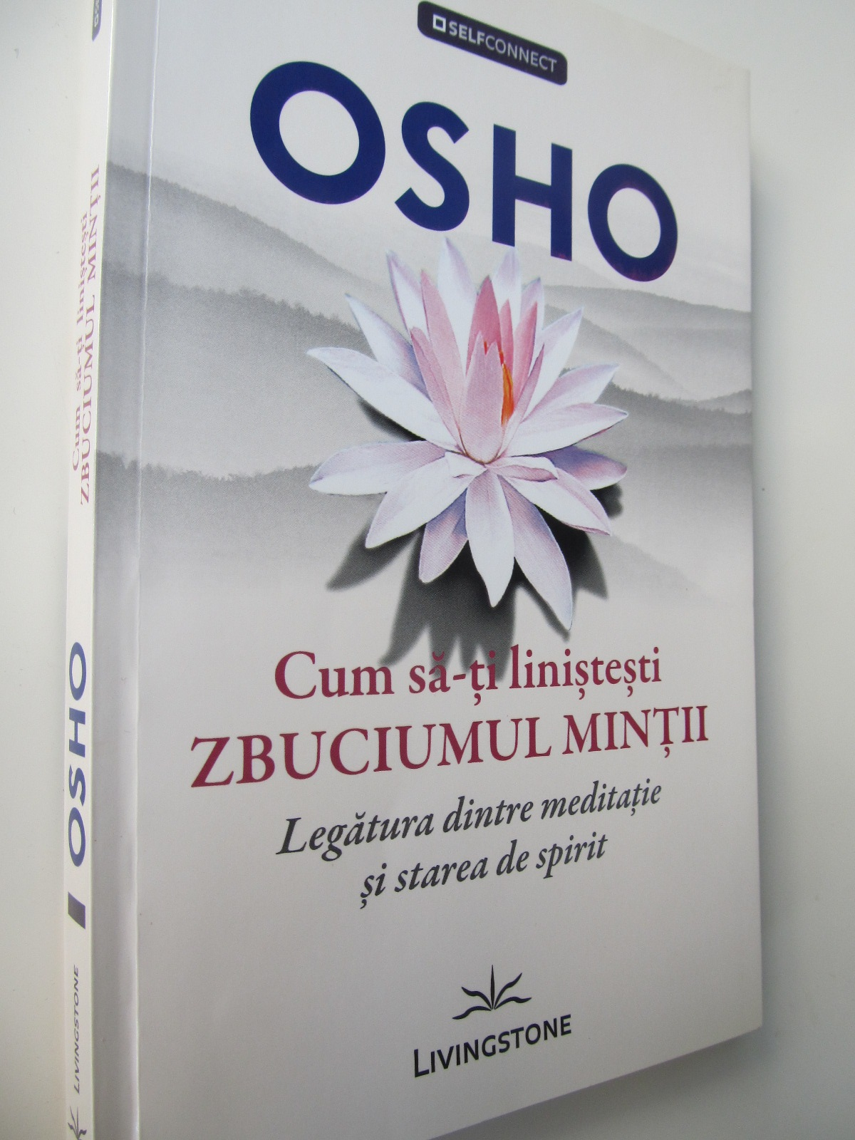 Cum sa-ti linistesti zbuciumul mintii - Legatura dintre meditatie si stare de spirit - Osho | Detalii carte