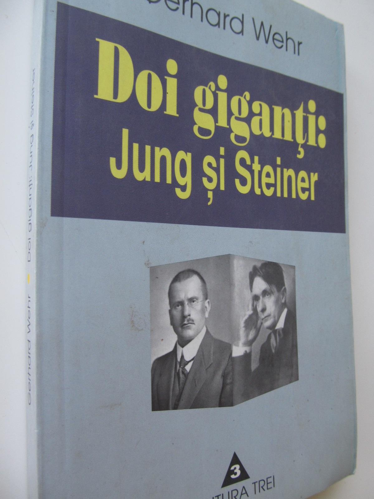 Doi giganti Jung si Steiner - Gerhard Wehr | Detalii carte