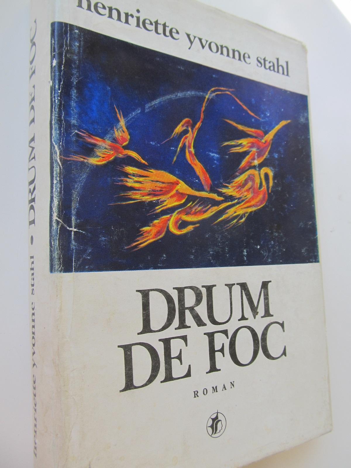 Drum de foc - Henriette Yvonne Stahl | Detalii carte
