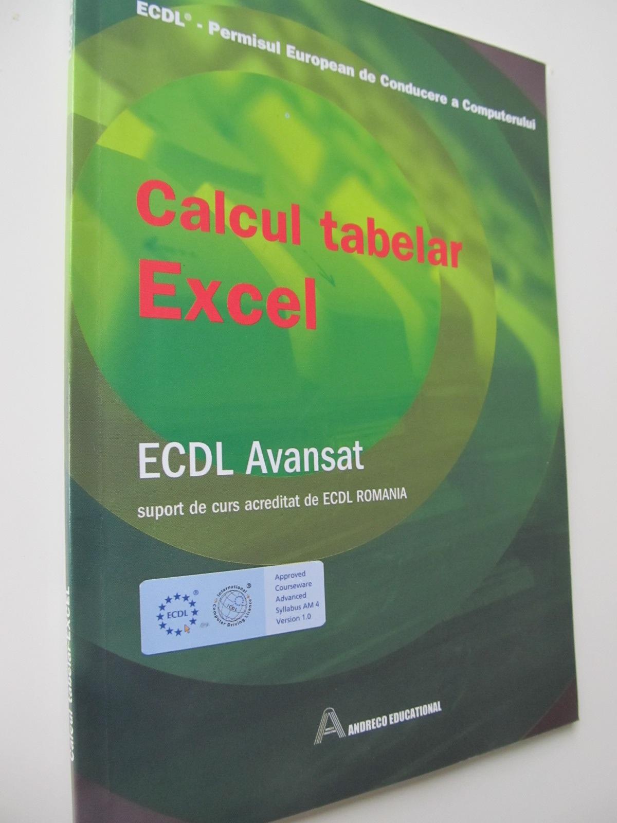 ECDL Calcul tabelar Excel - Ana Dulu | Detalii carte