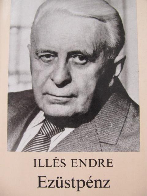 Ezustpenz - Illes Endre | Detalii carte