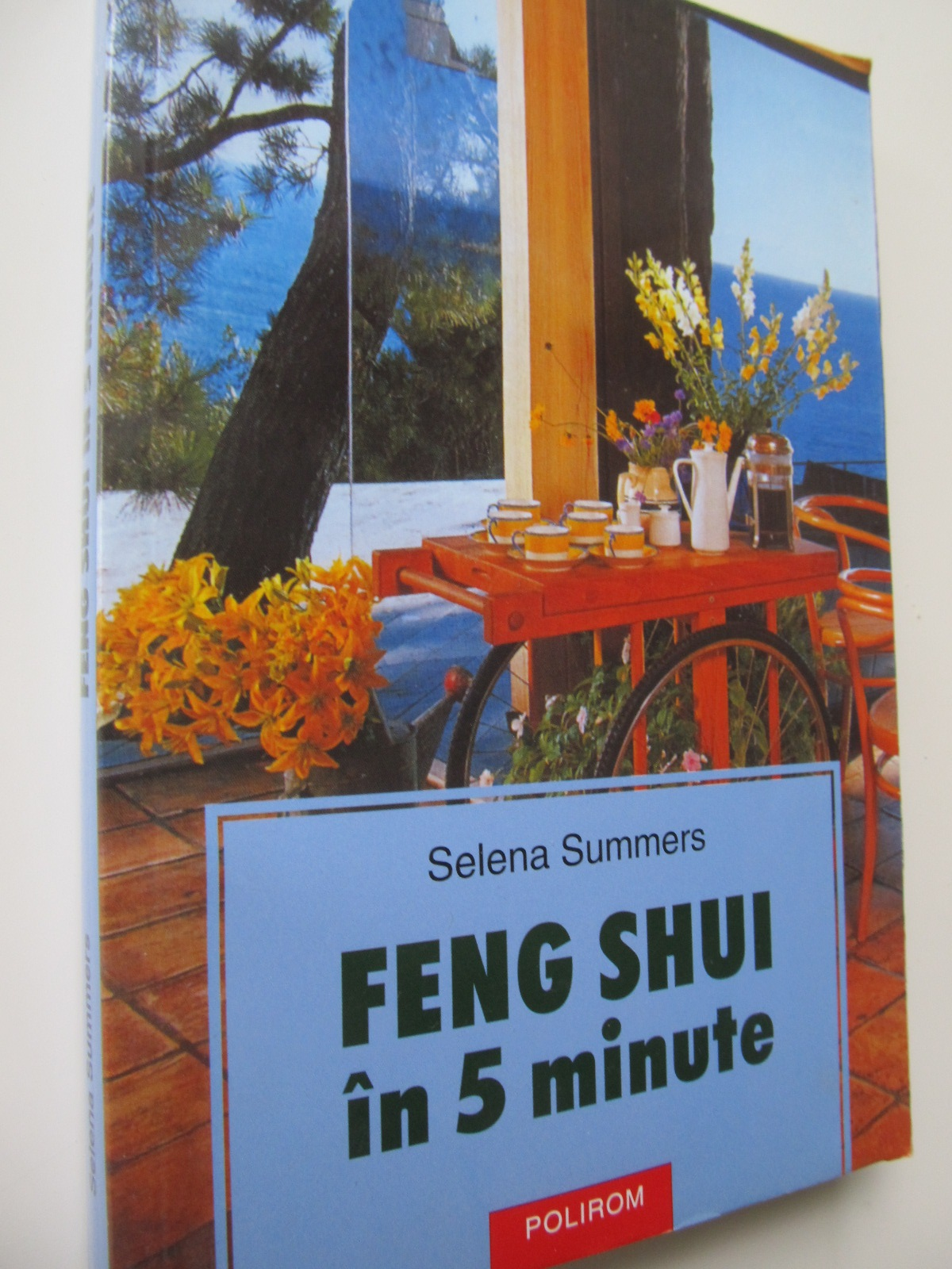 Feng Shui in 5 minute - Selena Summers | Detalii carte