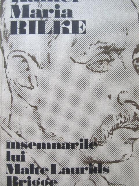Insemnarile lui Malte Laurids Brigge - Rainer Maria Rilke | Detalii carte