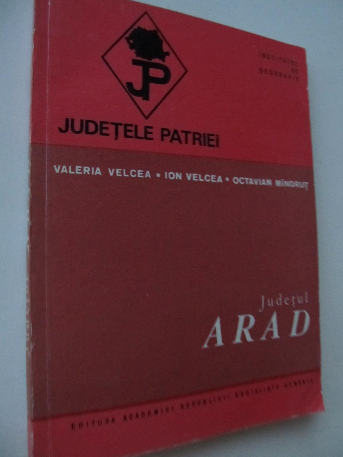 Judetele patriei - Judetul Arad (cu harta) - Valeria Velcea , Ion Velcea , ... | Detalii carte