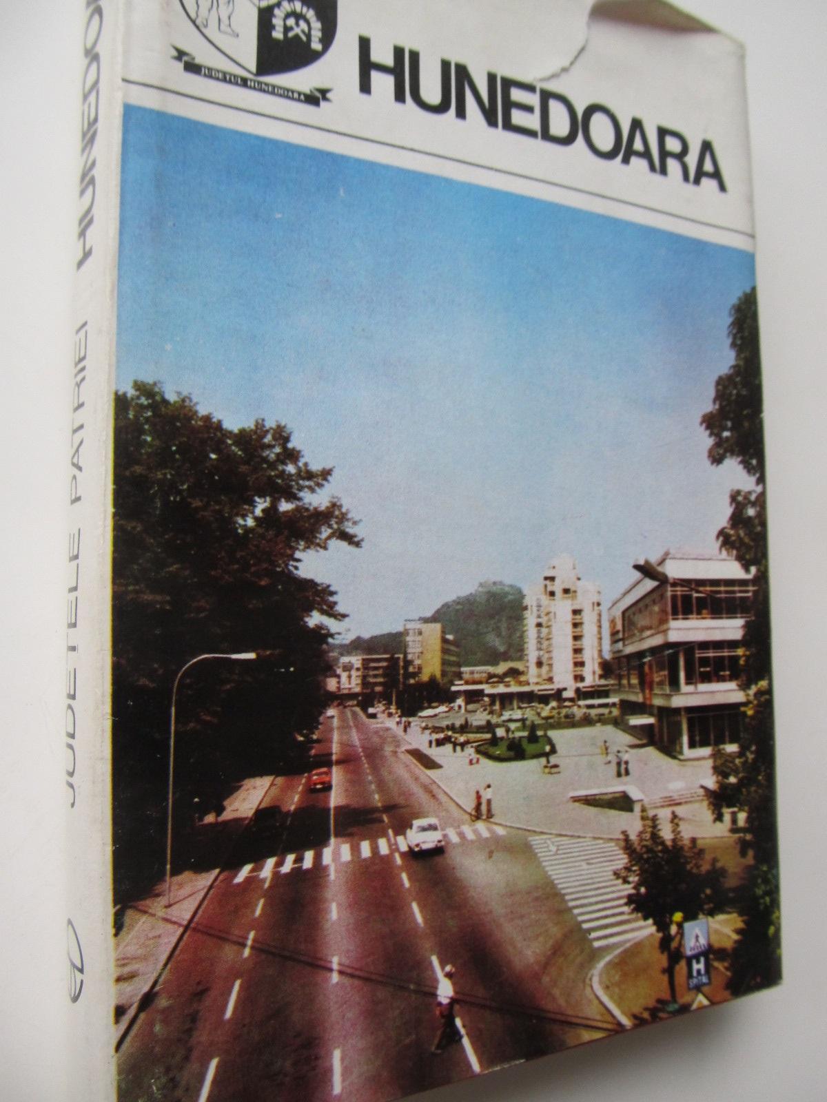 Carte Judetele patriei - Judetul Hunedoara - Monografie - Ioan Marza , ...