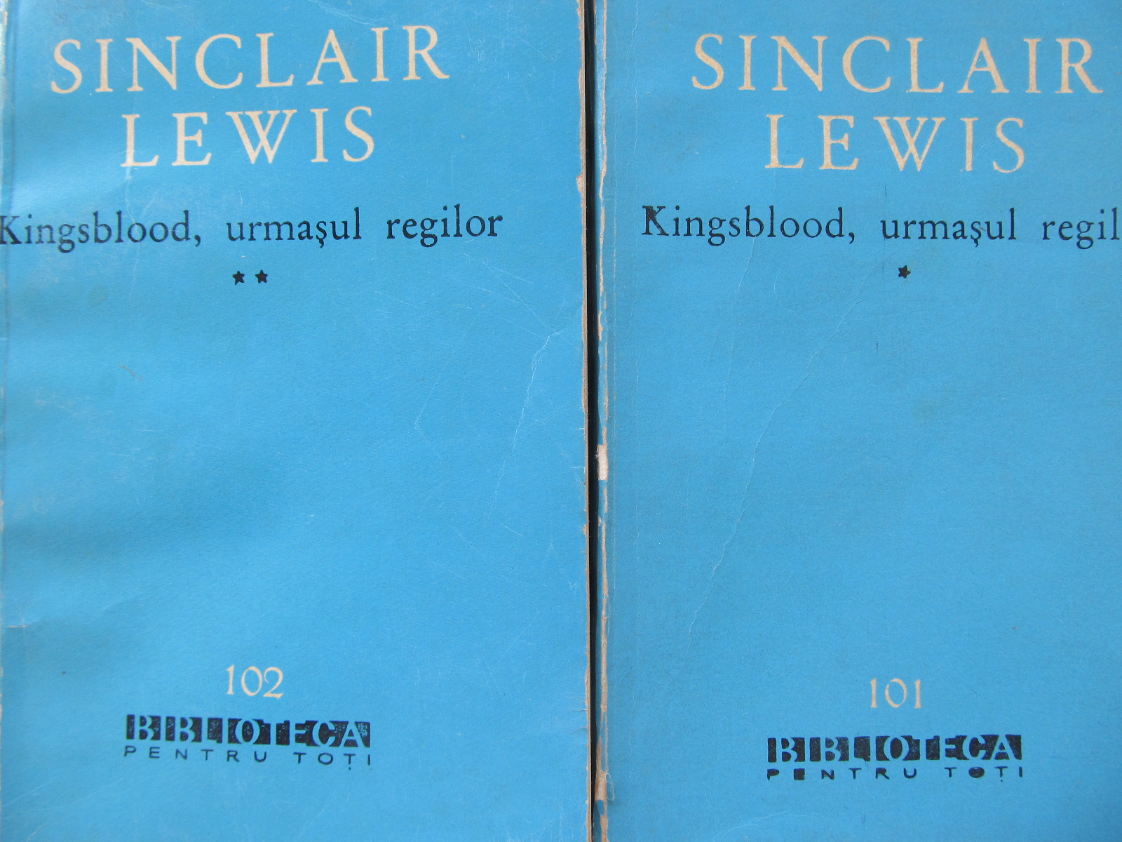Kingsblood urmasul regilor (2 vol.) - Sinclair Lewis | Detalii carte