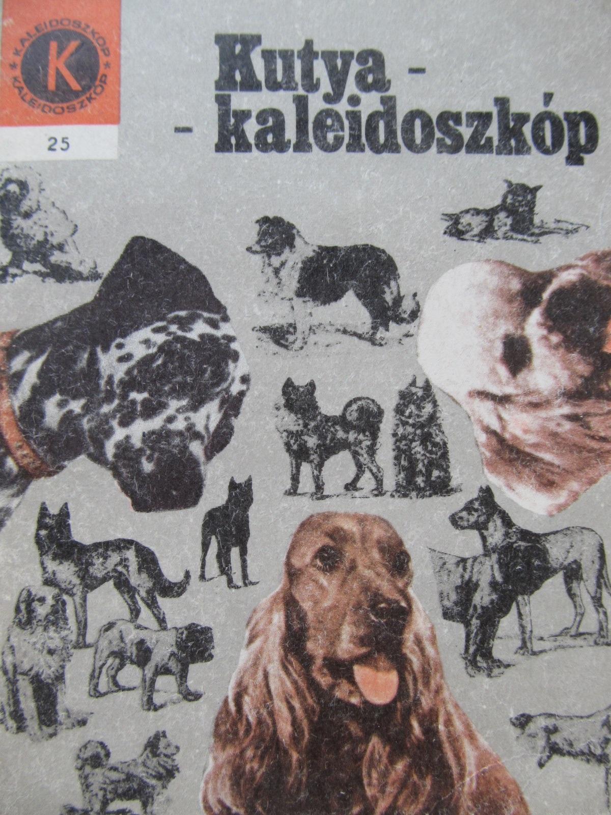 Kutya kaleidoszkop (25) - Bogdan Imre | Detalii carte