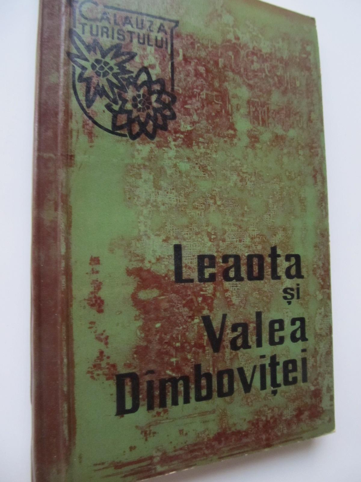 Leaota si Valea Dambovitei (cu harta) - I. Stefanescu | Detalii carte