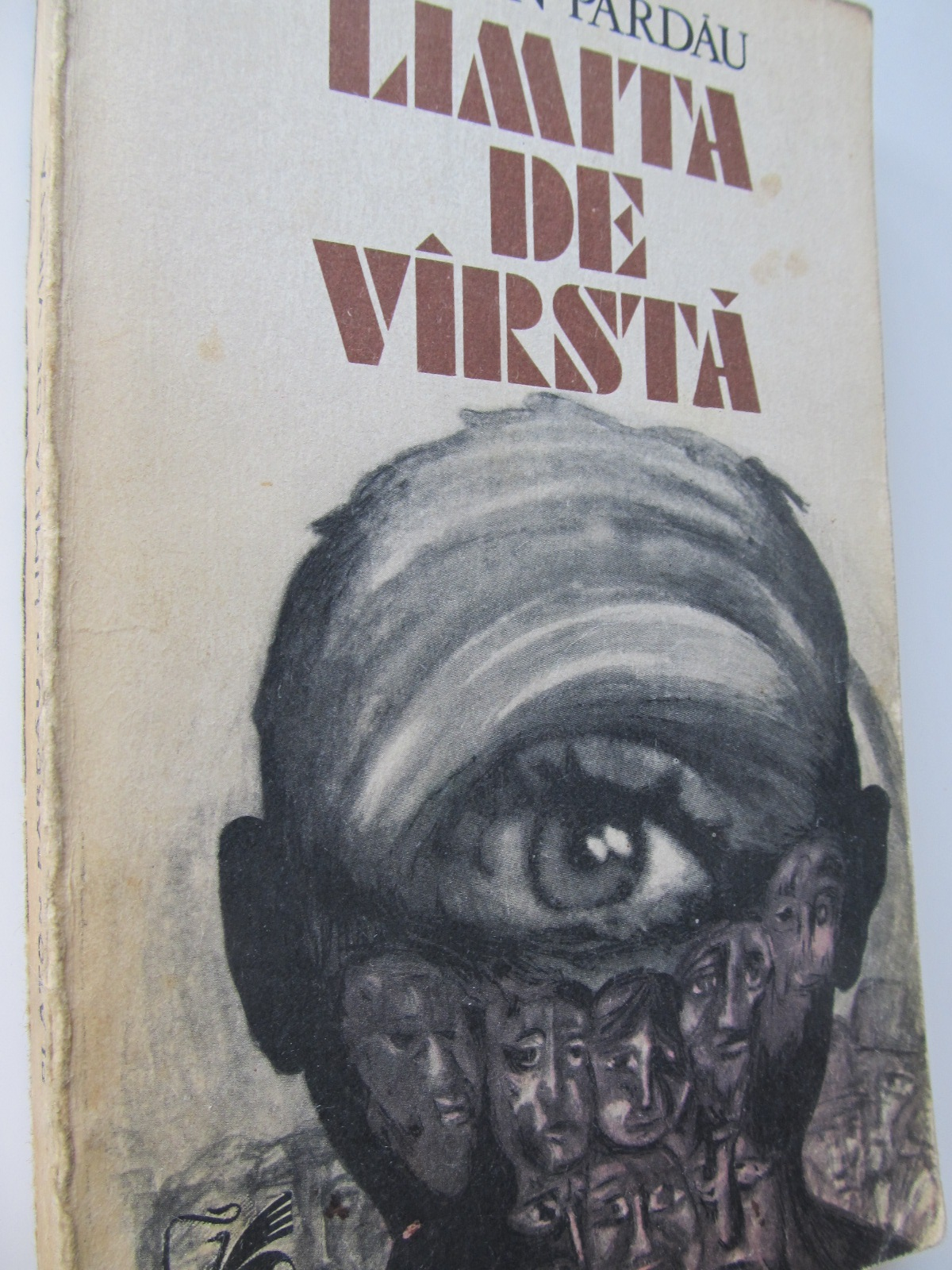 Limita de varsta - Platon Pardau | Detalii carte