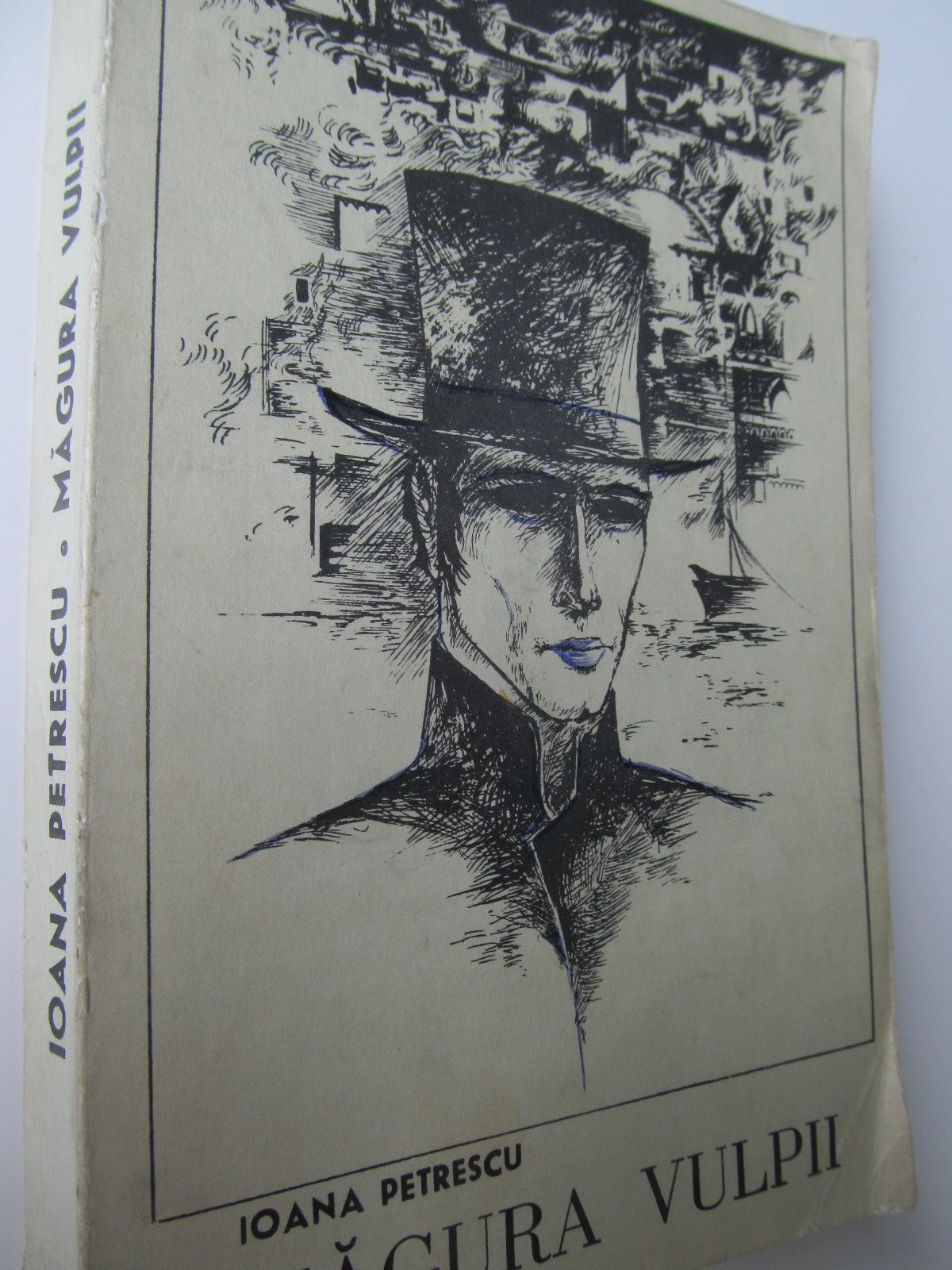 Magura vulpii - Ioana Petrescu | Detalii carte