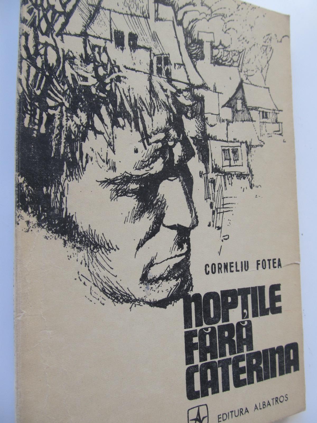 Noptile fara Caterina - Corneliu Fotea | Detalii carte