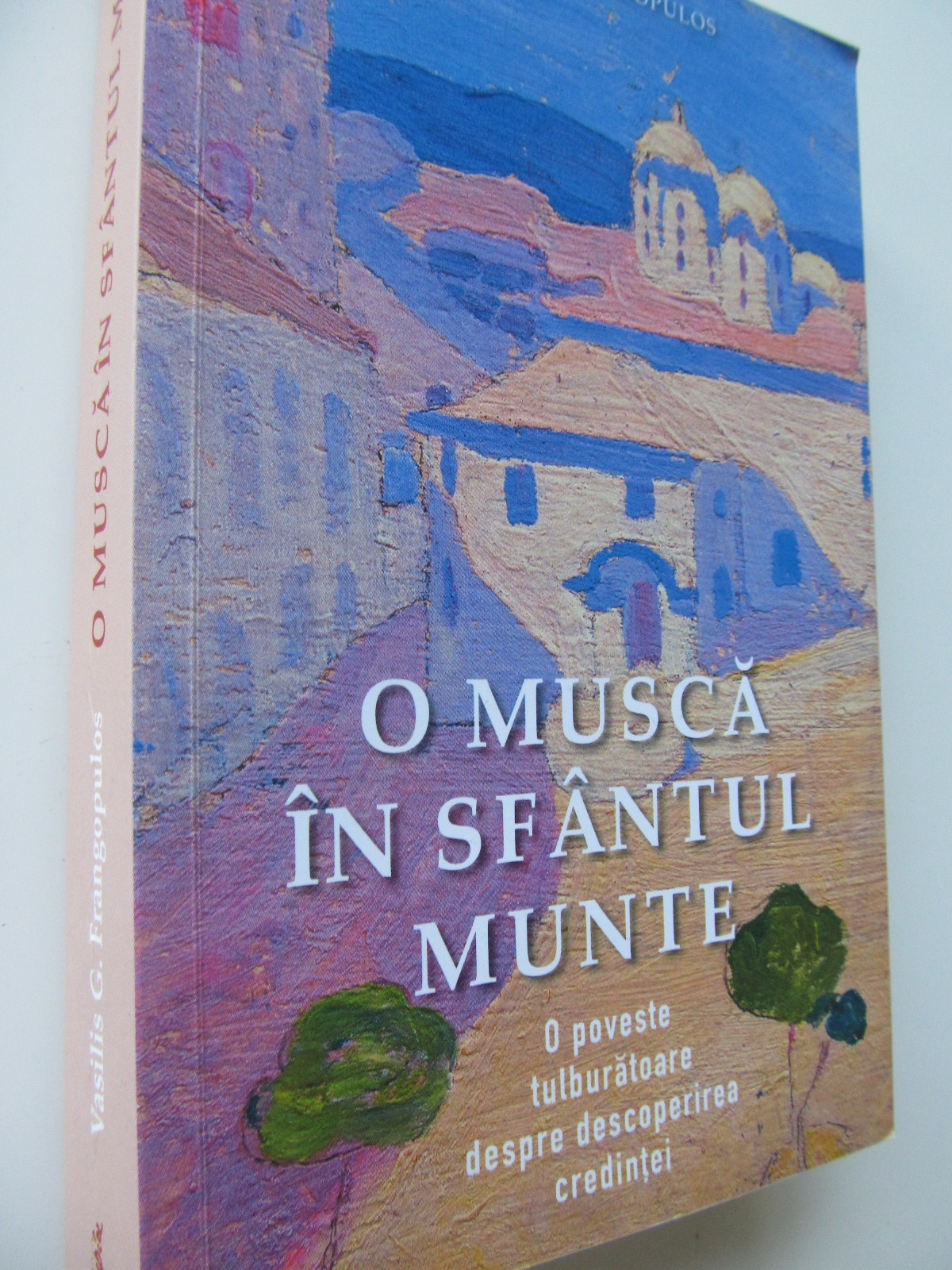 O musca in sfantul munte - Vasilis Frangopulos | Detalii carte