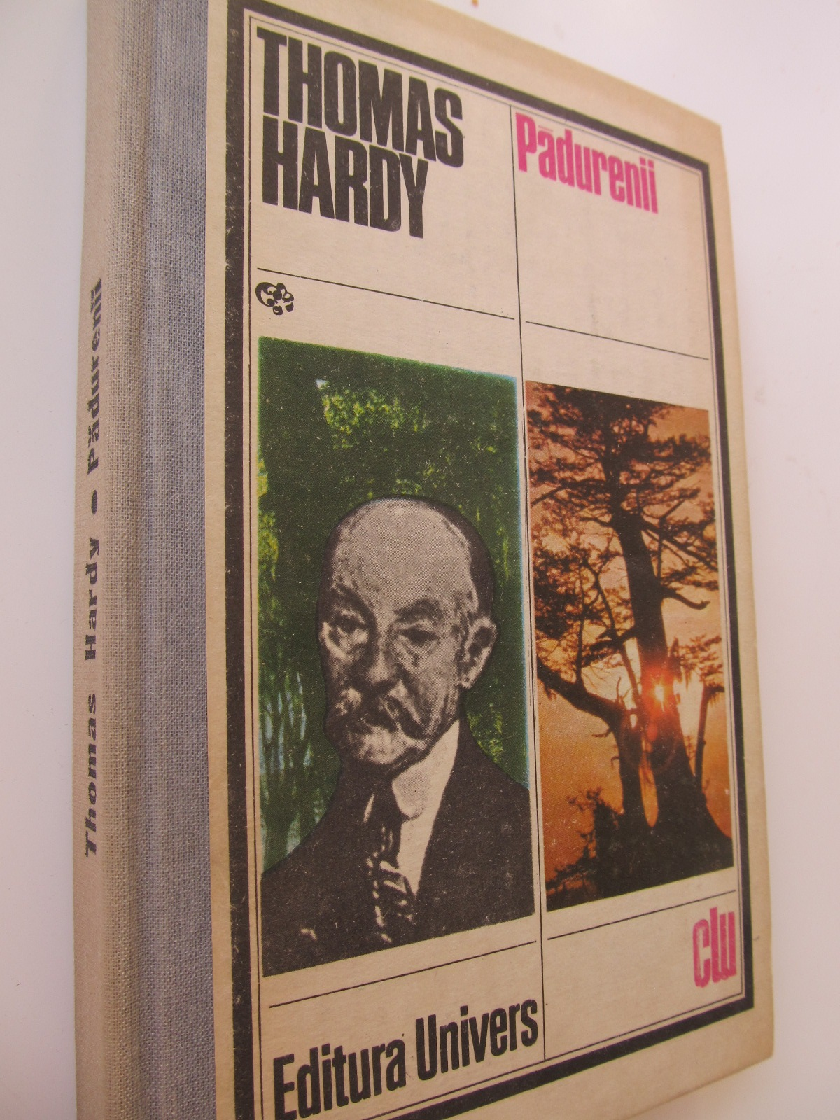 Padurenii - Thomas Hardy | Detalii carte