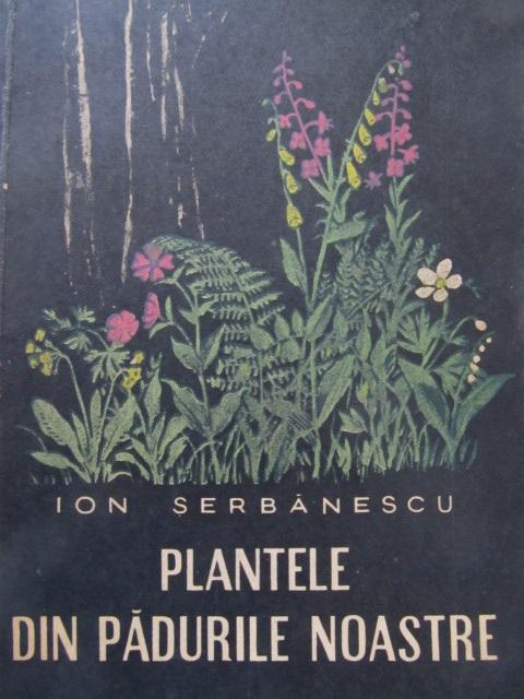 Plantele din padurile noastre [1] - Ion Serbanescu | Detalii carte