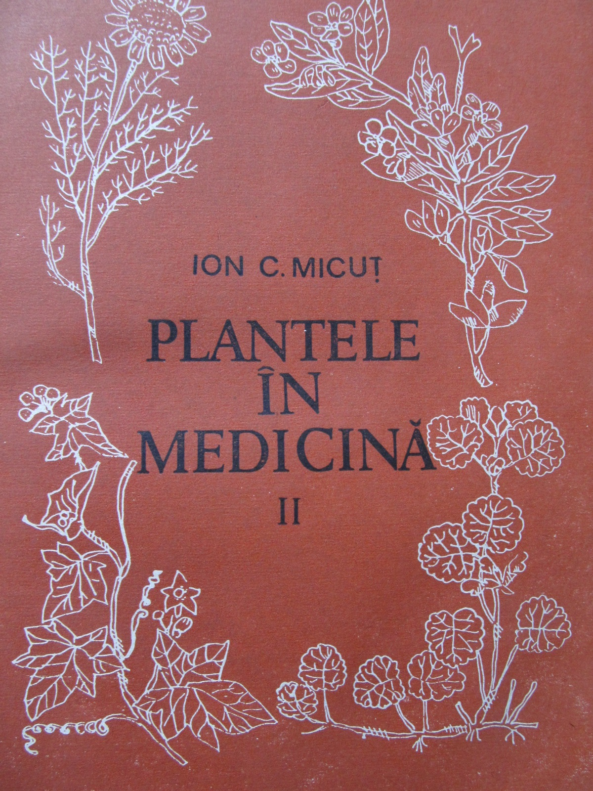 Plantele in medicina (vol. 2) - Ion C. Micut | Detalii carte