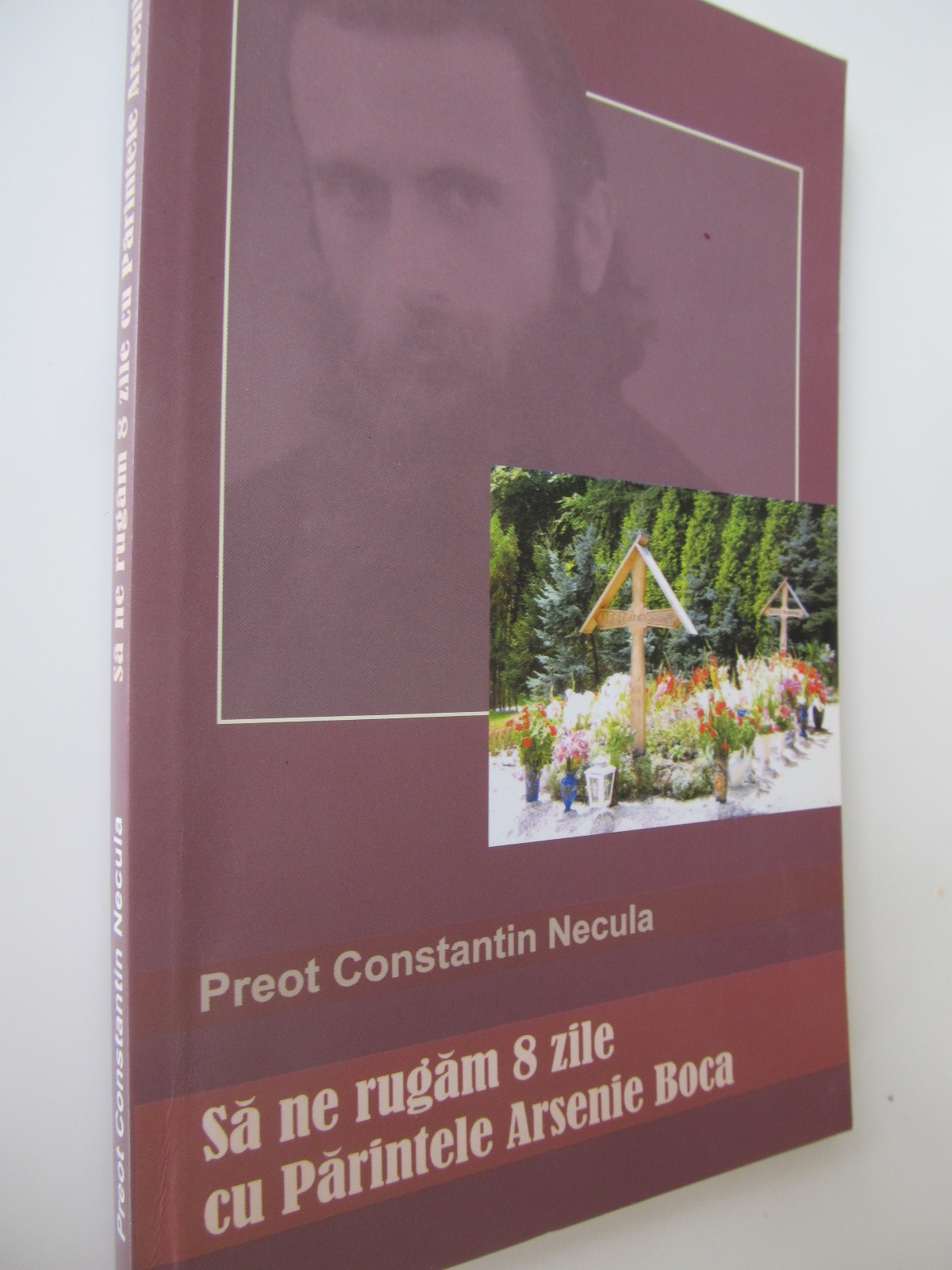 Sa ne rugam 8 zile cu Parintele Arsenie Boca - Preot Constantin Necula | Detalii carte