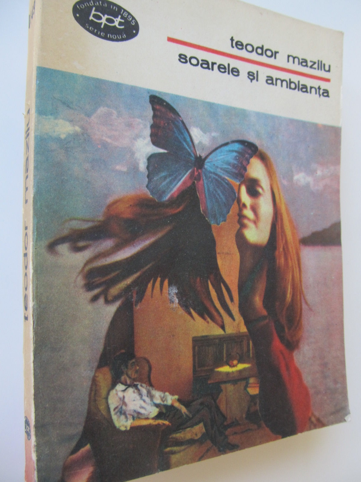 Soarele si ambianta - Teodor Mazilu | Detalii carte
