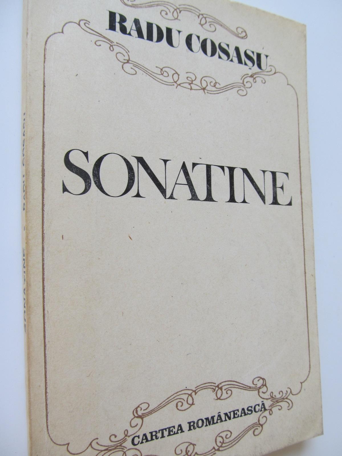 Sonatine - Radu Cosasu | Detalii carte