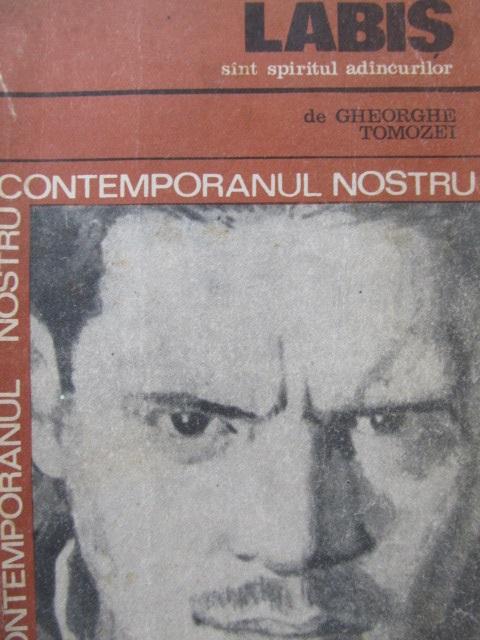 Sunt spiritul adancurilor - Nicolae Labis | Detalii carte