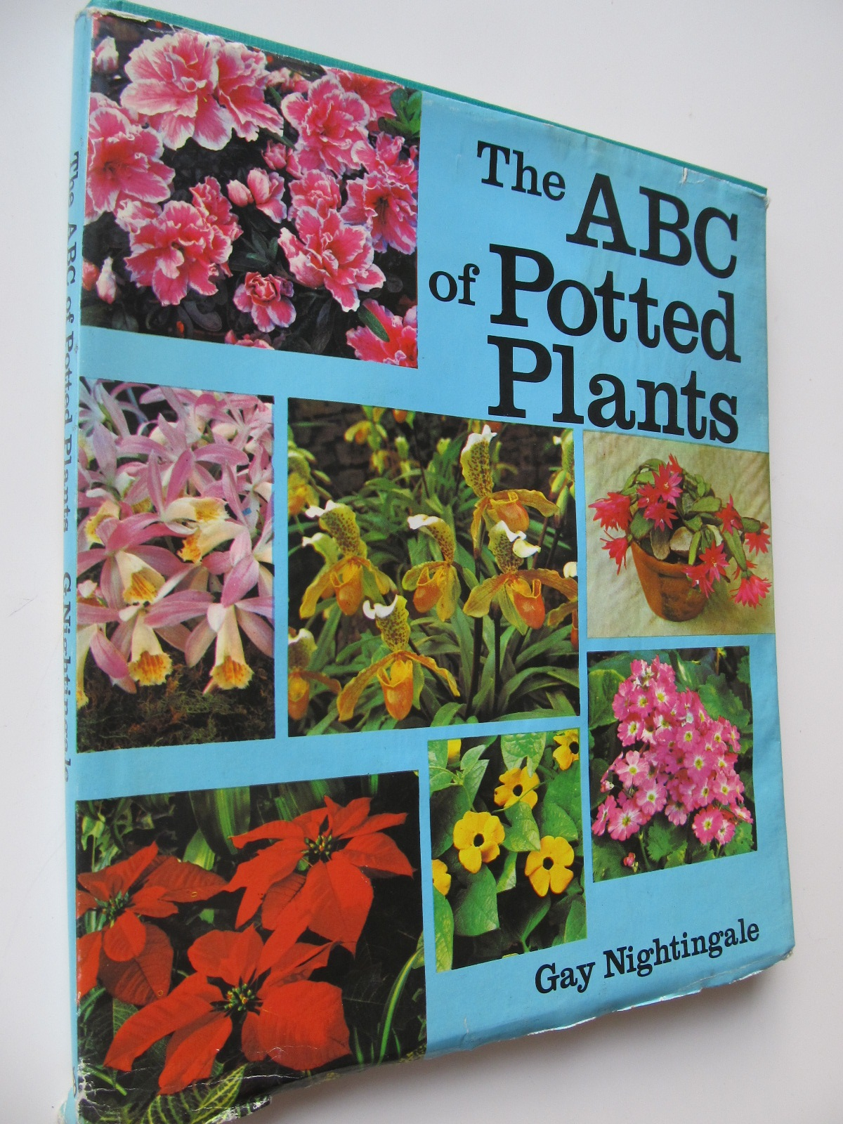 Carte The ABC of Potted Plants - Gay Nightingale