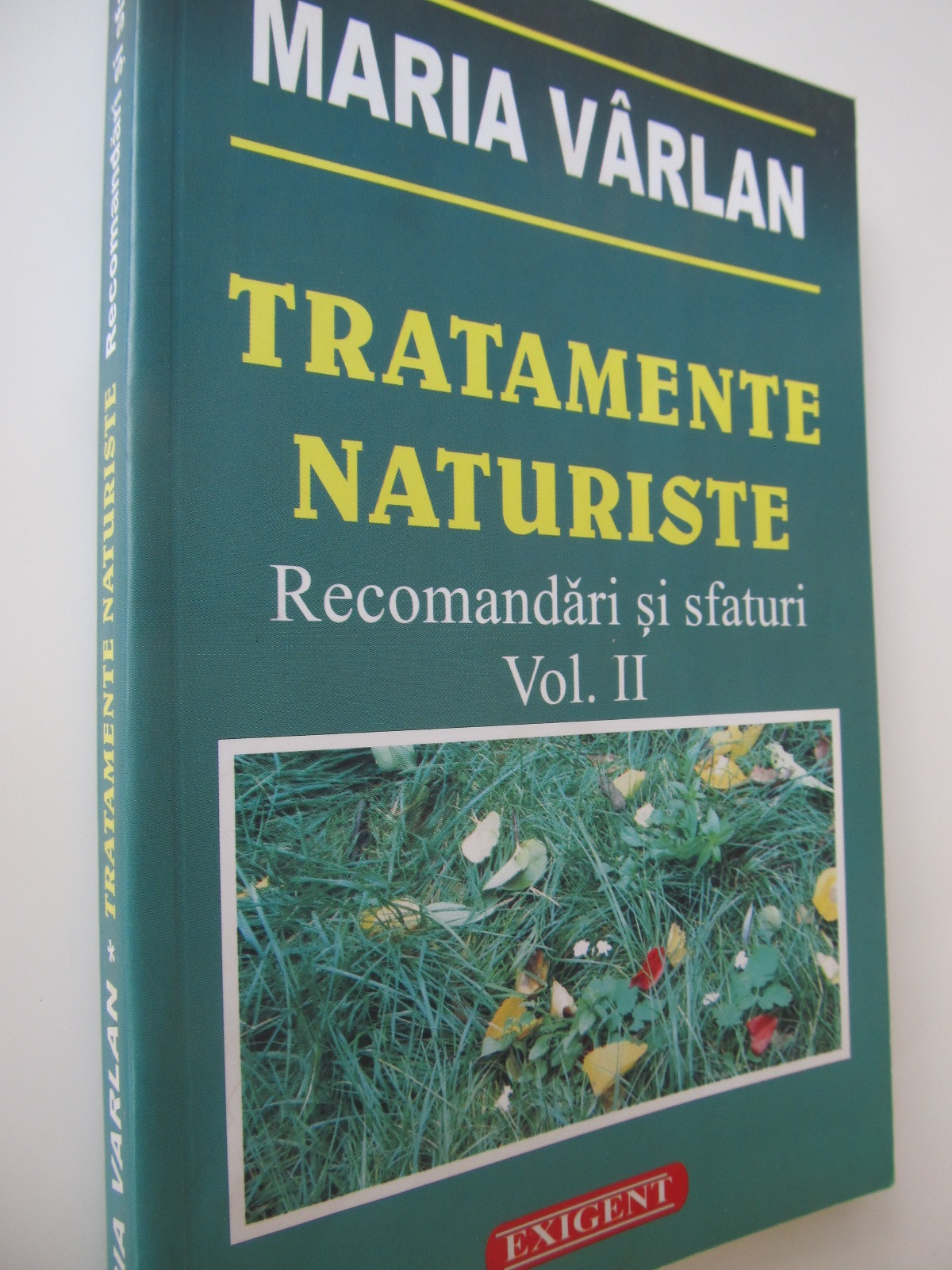 Tratamente naturiste - Recomandari si sfaturi (vol 2) - Maria Varlan | Detalii carte