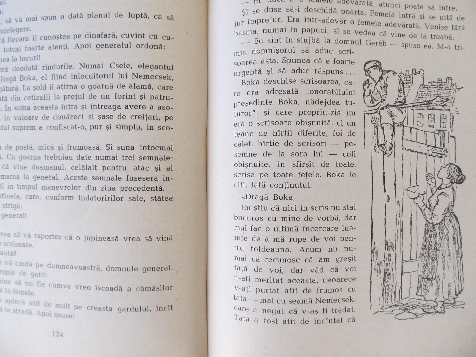 Carte Baietii din strada Pal (ilustr. Reich Karoly) - Molnar Ferenc