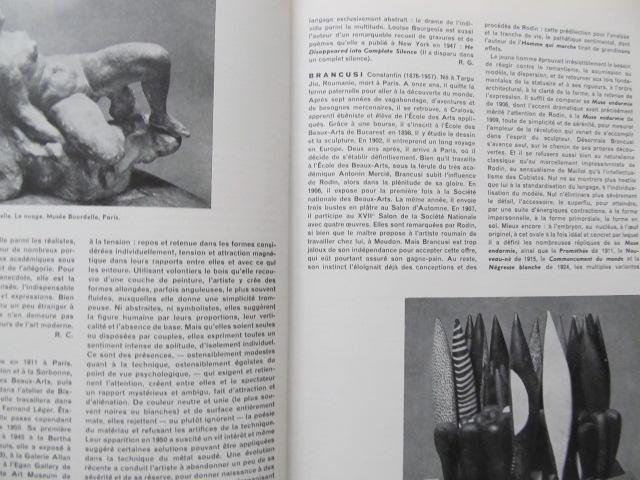 Carte Dictionnaire de la Sculpture moderne - Giovanni Carandente ,Denys Chevalier , ...
