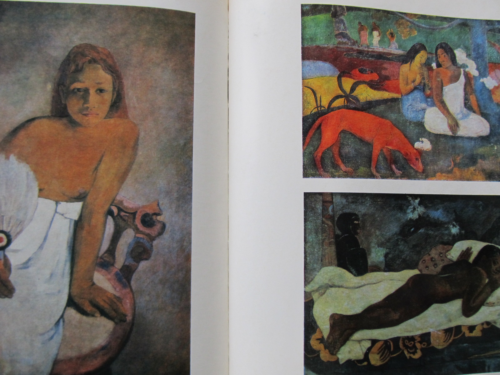 Carte Gauguin (Album) - format foarte mare - Nina Stanculescu Zamfirescu